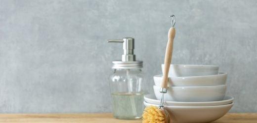 Combien de types de bactéries vivent dans les éponges à vaisselle de cuisine?