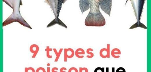 5 poissons différents que vous devriez éviter de manger